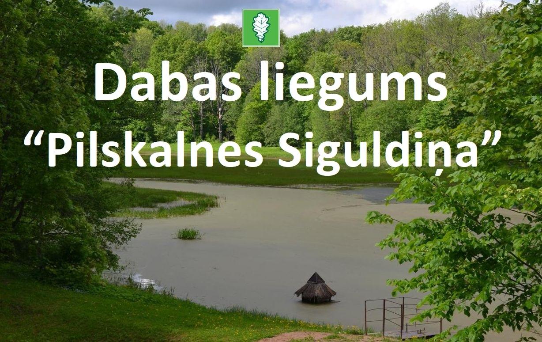 """Ienāc un sajūti dabas harmoniju dabas liegumā """" Pilskalnes Siguldiņa""""!"""