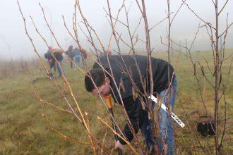 Svinot Latvijas simtgadi, stādījām kokus Ilūkstē