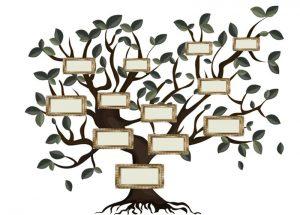 Ilūkstes novada centrālā bibliotēka aicina uz informatīvo nodarbību par dzimtas koka veidošanu