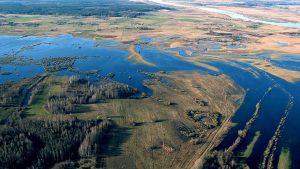 """Bebrenē notiks informatīva sanāksme par dabas parka """"Dvietes paliene"""" dabas aizsardzības plāna izstrādes uzsākšanu"""