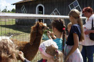 """Ar daudzveidīgām aktivitātēm aizvadīta bērnu vasaras nometne """"Ziņkārīga vārna"""""""
