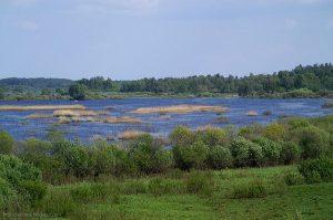 """Dabas parka """"Dvietes paliene"""" dabas aizsardzības plāna sabiedriskās apspriešanas sanāksme"""