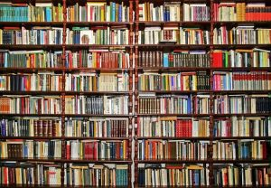 Novada bibliotēkas iepazīstina ar aizvadītajā gadā lasītāko grāmatu TOP 10