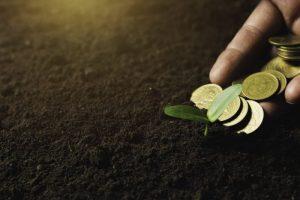 Zemkopības ministrija piedāvā vērienīgu atbalsta pasākumu plānu lauksaimniecībai un pārtikas ražošanai