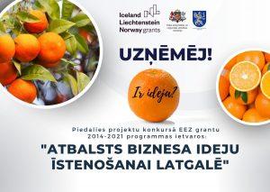 """Latgales plānošanas reģions izsludina pieteikšanos atklātā projektu konkursā """"Atbalsts biznesa ideju īstenošanai Latgalē"""" EEZ grantu 2014.–2021. gada perioda programmas """"Vietējā attīstība, nabadzības mazināšana un kultūras sadarbība"""" ietvaros"""
