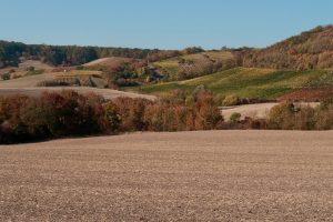 Turpmāk lēmumus par zemes īpašumtiesību atjaunošanu lauku apvidos pieņems Valsts zemes dienests
